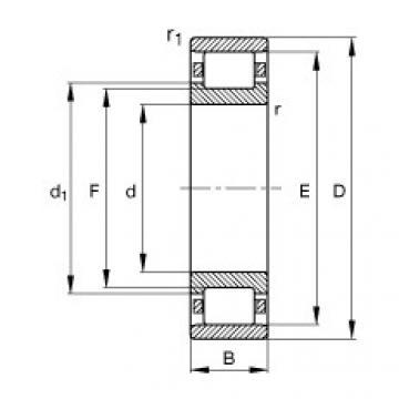 Bearing N230-E-M1 FAG