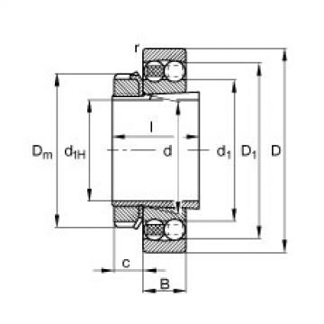Bearing 1316-K-M-C3 + H316 FAG
