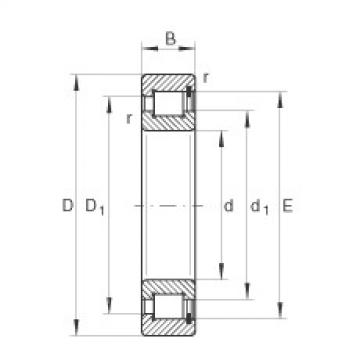 Bearing SL1818/600-E-TB INA