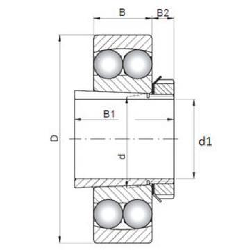 Bearing 2209K-2RS+H309 ISO