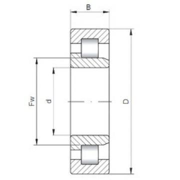 Bearing NJ317 ISO
