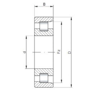 Bearing NF10/560 ISO