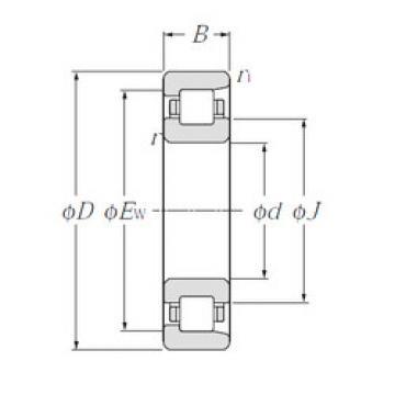Bearing NF332 NTN