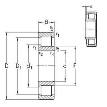 Bearing NJ305-E-TVP3 NKE