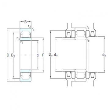 Bearing NU1010ECP/HC5C3 SKF