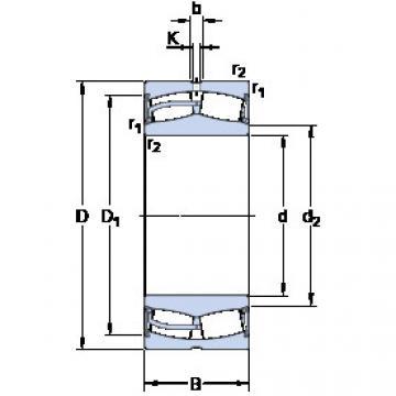 Bearing 24020-2RS5/VT143 SKF