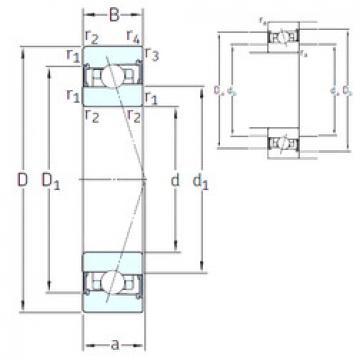 Bearing HX40 /S/NS 7CE3 SNFA