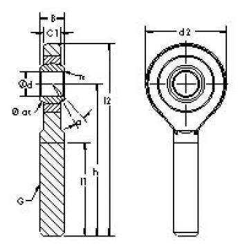 Plain Bearings SAZJ12 AST