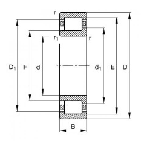 Bearing NJ309-E-TVP2 FAG #1 image